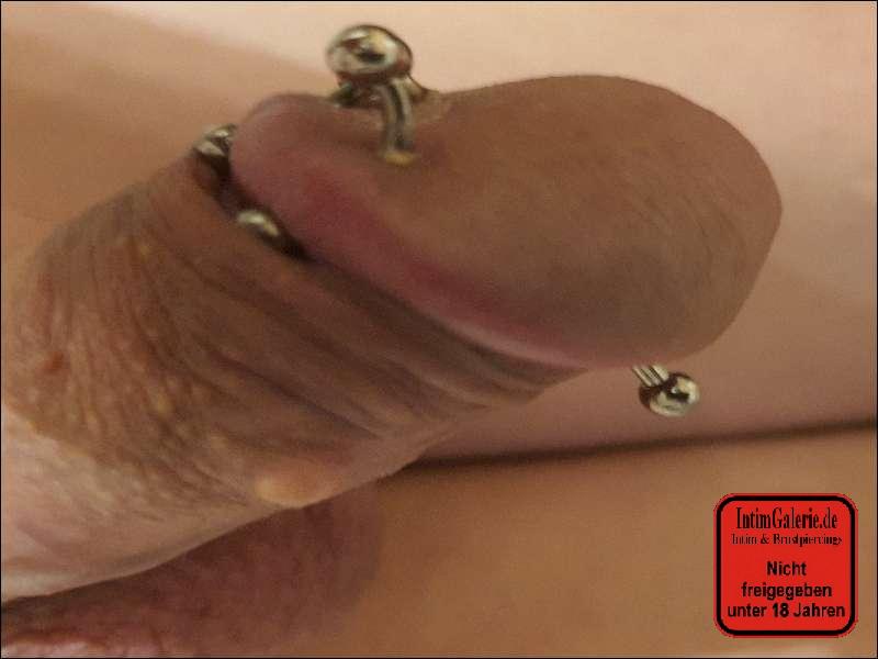 Piercing  I intimgalerie.de
